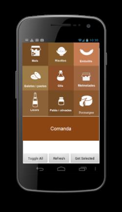 TPVs para acceso desde smartphones